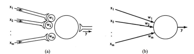 figure (b) neural network